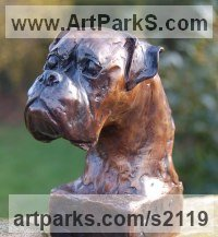 Busts and Heads Sculpture Statues statuettes Commissions Bespoke Custom Portrait Memorial Commemorative sculpture or statue by sculptor artist Marie Ackers titled: 'Boxer Dog Head study II (Portrait Pet Bust Portrait Commission sculpture)' in Bronze