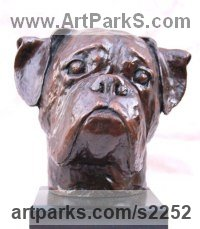 Dogs Sculpture by sculptor artist Marie Ackers titled: 'life size Boxer Dog Head study (bronze Portrait Bust sculpture/statue)' in Bronze resin ( bronze  on order)