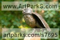 Bronze resin (cold cast bronze) and oak base Birds of Prey / Raptors sculpture by Marie Shepherd titled: 'Little Owl I (Stretching a Wing bronze Perched life size sculpture)'