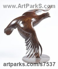 Bronze Wild Bird sculpture by Martin Hayward-Harris titled: 'Red Grouse in Flight (Flying Game Bird statue)'