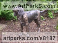 Bronze Resin Dogs sculpture by Nicholas Collins titled: 'Springer Spaniel (life size Waiting sculpture)'