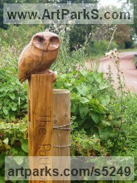 Oak Wood Varietal Mix of Bird Sculptures or sculpture by sculptor Nigel Sardeson titled: 'Little Owl (Small Carved Wood on Post carvings/statues/statuettes)'