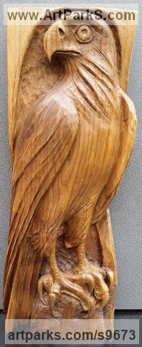 Wall Mounted or Wall Hanging sculpture by NIKOLAY NIKOLOV titled: 'Falcon (Low Relief Bird of Prey Wooden Wall statue)'