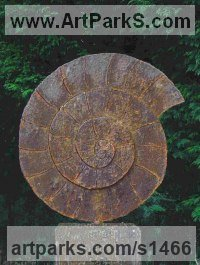 Shells Sculpture including Land and Sea and Freshwater Shells Fossil Shells by sculptor artist Peter M Clarke titled: 'Ammonite II (Affordable garden or Yard Fossil Shell statue sculpture)' in Mild steel