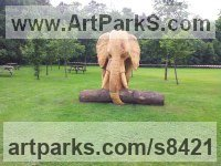 Oak Wood Elephants (Pachederms) Sculptures, African, Indian, Sumatran sculpture by sculptor Robert Coia titled: 'African Elephant (life size Carved Wood sculptures)'
