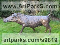 Bronze Resin Pigs, Sows, Boars, Hogs, Piglets Sounders Sculptures or Statues sculpture by Rosie Sturgis titled: 'Wilberforce the Warthog - Bronze resin'