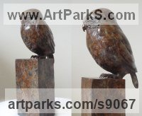 Bronze Small bird sculpture by Scott Shore titled: 'The Little Owl (Perched bronze Bird of Prey sculpture)'