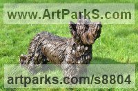 Cold Cast Bronze Pet and Animal Portrait Custom or Bespoke or Commission Commemorative or Memoriaql sculpture statue sculpture by Tanya Russell titled: 'Yorkshire Terrier (life size Standing sculpture)'
