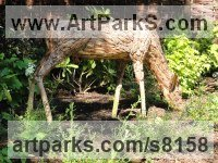 Deer sculpture by Tessa Hayward titled: 'Feeding Doe (Scrap Wood and Bark life size Deer statue)'