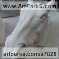 Maltese Limestone Mounted Heads, Masks, Wall Mounted Busts of Animals sculpture by Thomas J. Nicholls titled: 'Cracker (Carved stone Portrait Horse Heasd Bust Commission statue)'