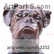 "bronze resin (bronze on order) Dog Sculpture by Marie Ackers titled: ""life size Boxer Dog Head study (bronze Portrait Bust sculpture/statue)"""